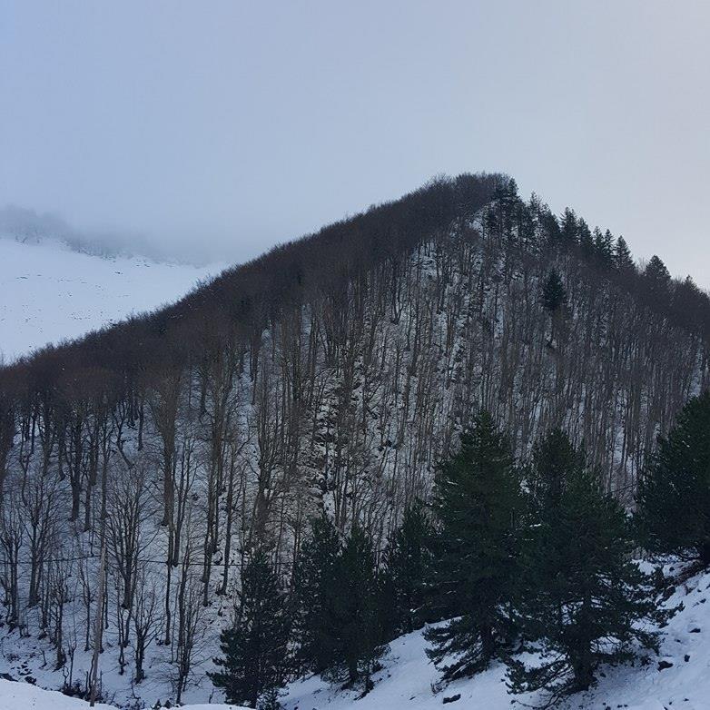 Ανήλιο Μετσόβου χιονοδρομικό (5)