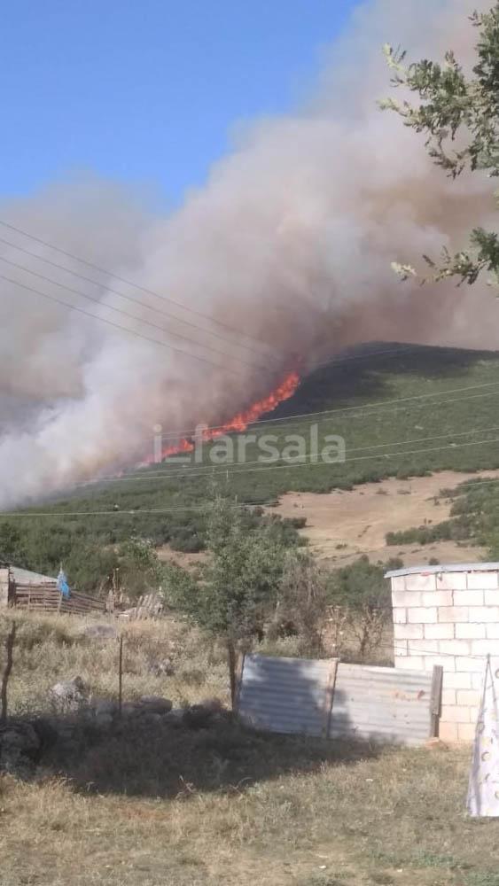 201908031556599064 - Φωτιά σε χωριό στα Φάρσαλα (φωτο)