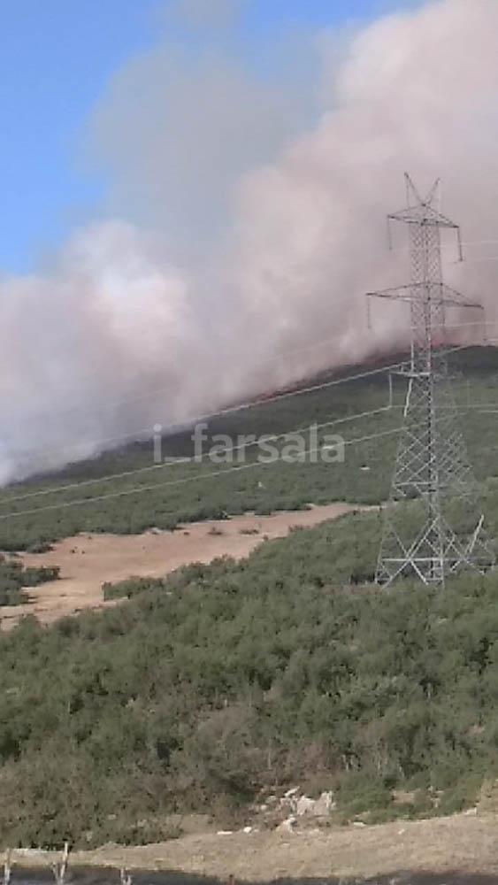 201908031557006455 - Φωτιά σε χωριό στα Φάρσαλα (φωτο)