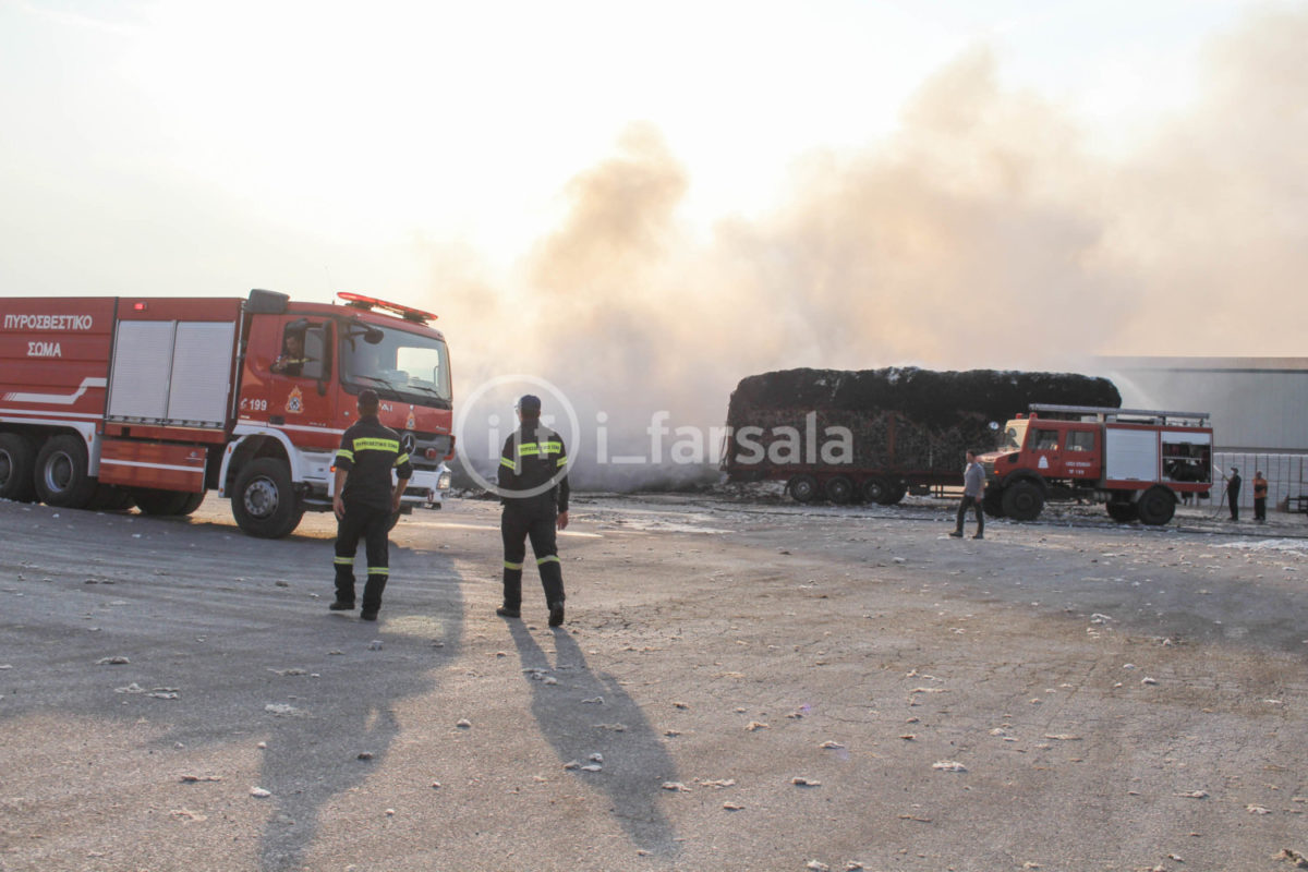 201910190800036682 1200x800 - Φωτιά στο εκκοκκιστήριο στα Φάρσαλα (φωτο)