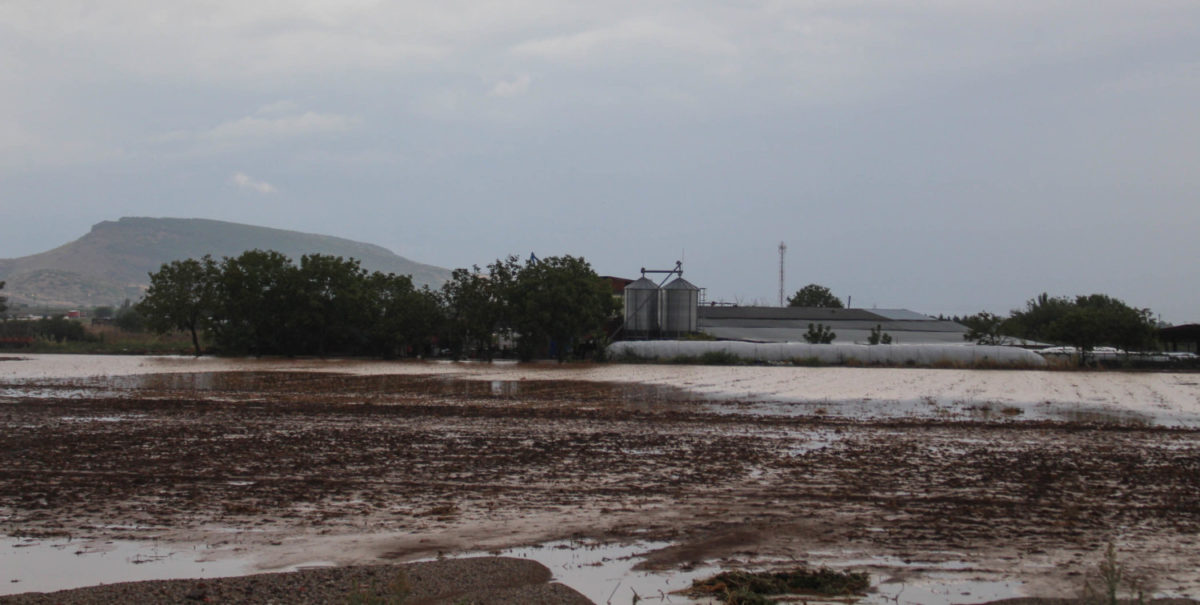 202009200551146836 1200x605 - Εικόνες βιβλικής καταστροφής στα Φάρσαλα (δείτε φωτογραφίες)