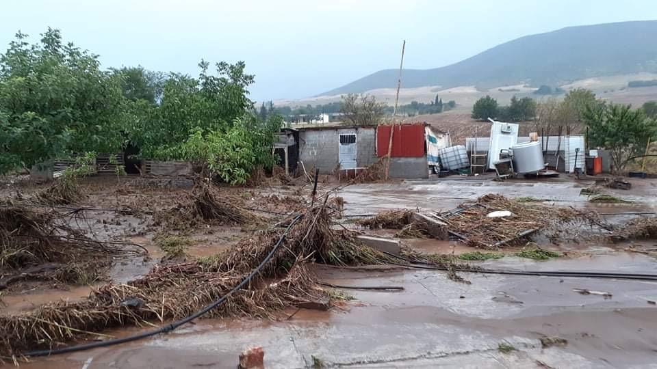 202009200607568916 - Εικόνες βιβλικής καταστροφής στα Φάρσαλα (δείτε φωτογραφίες)